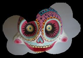 Caroline R. skull