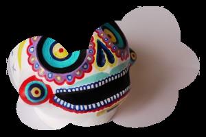 Charlotte P. skull