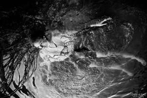 claire huteau-1-vol aqua
